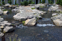 Multiple Water Features